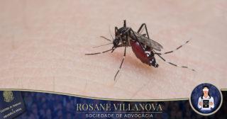 Seguridade Social aprova pensão de R$ 1.874 para vítimas de vírus zika